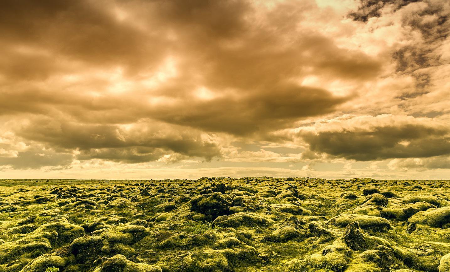 Eldhraun Lava field Iceland