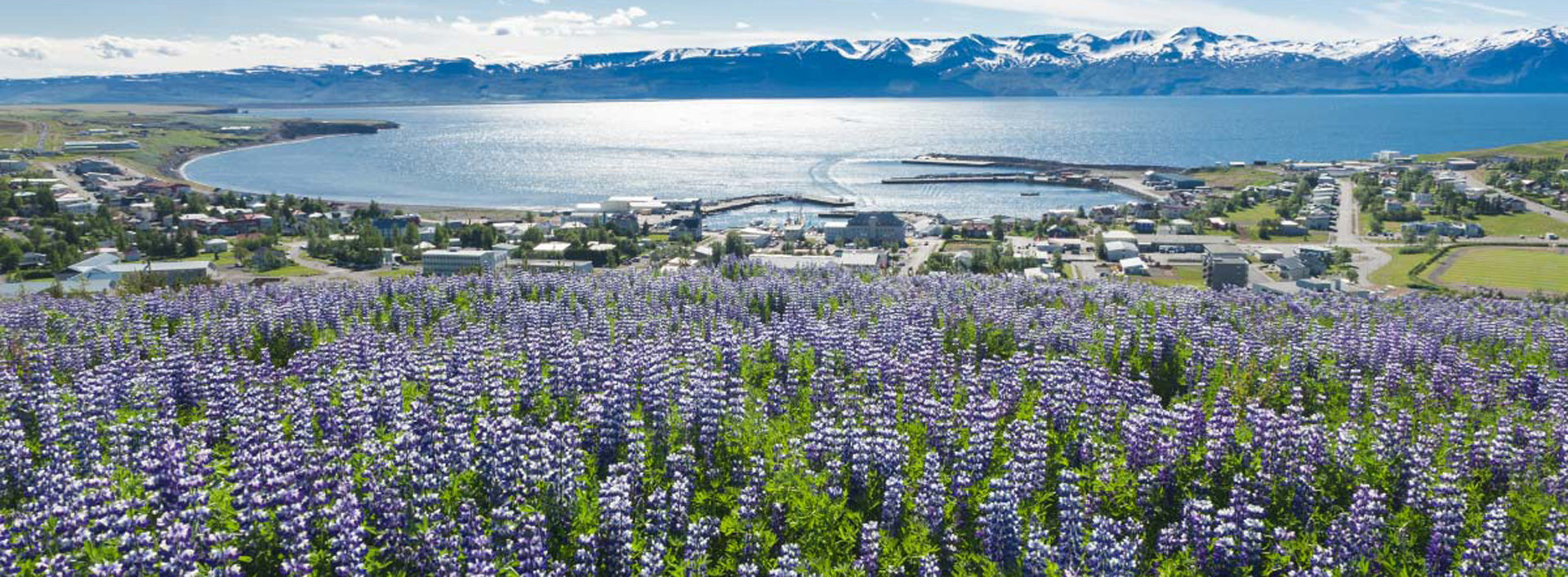 Iceland in May: Things to See & Do